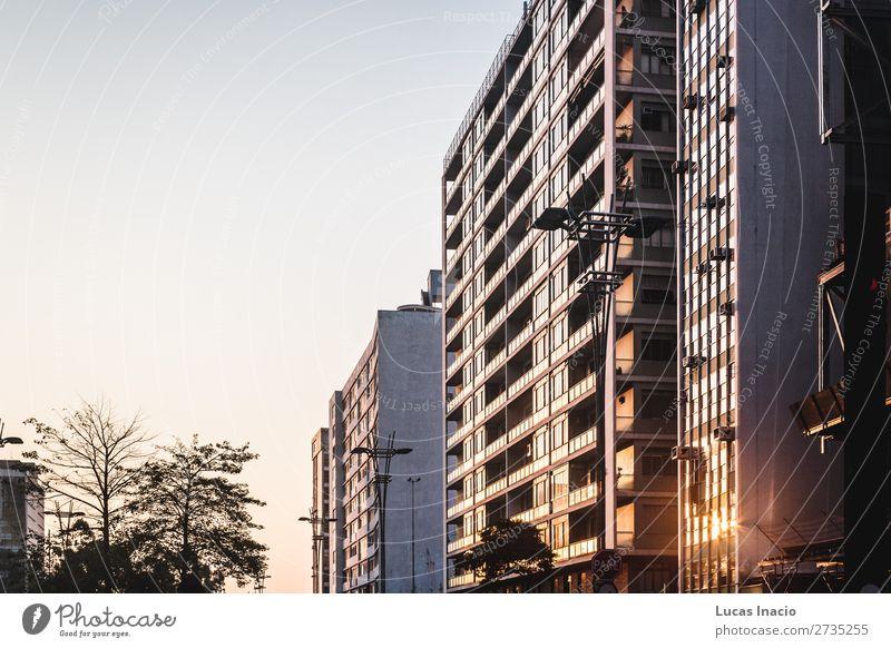 Paulista Avenue in Sao Paulo, Brasilien Haus Büro Business Umwelt Natur Himmel Baum Blatt Stadtzentrum Skyline Hochhaus Gebäude Architektur Straße amerika