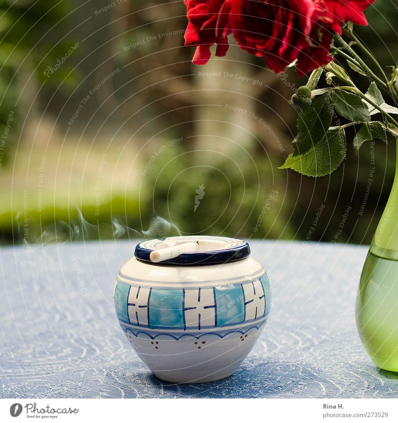 Rauchen - bitte nur auf der Terrasse Sommer Rose Garten Aschenbecher Vase blau grün rot Verantwortung ruhig Erholung Zigarette Zigarettenrauch Nikotin