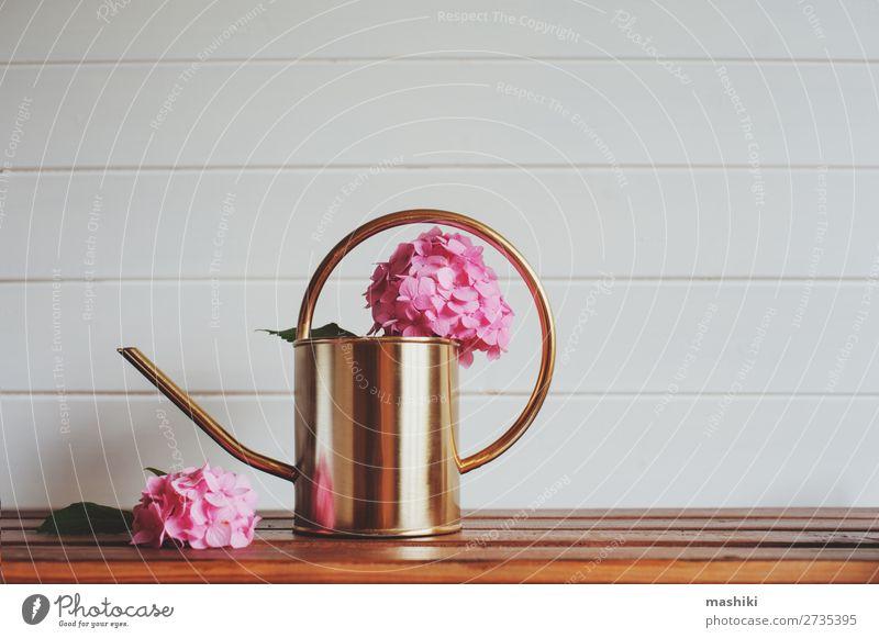 rosa Hortensienblüten mit Gießkanne auf Holztisch Design schön Freizeit & Hobby Sommer Garten Dekoration & Verzierung Tisch Natur Pflanze Blume Sträucher Blatt