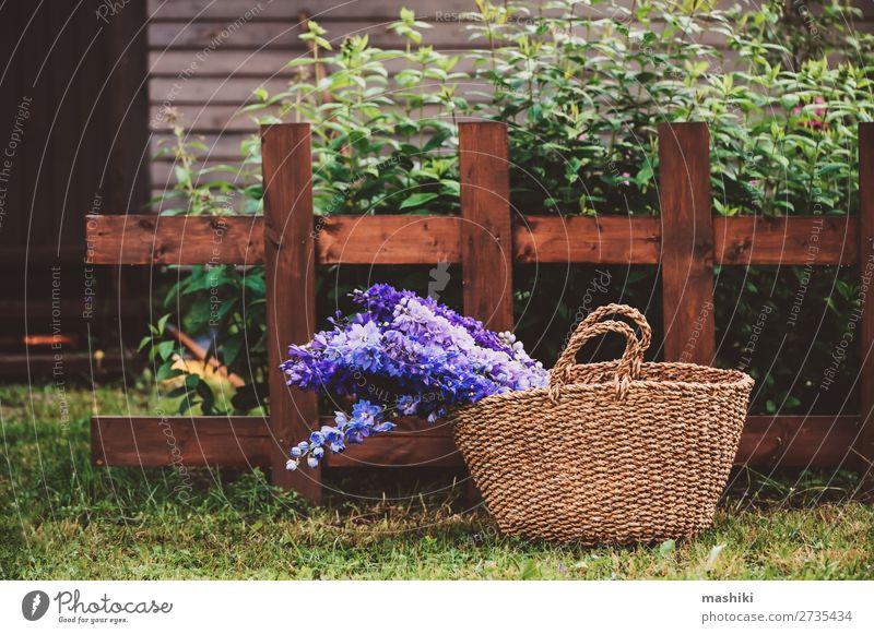 Strauß aus verschiedenen mehrfarbigen Delphinien schön Sommer Haus Garten Dekoration & Verzierung Gartenarbeit Natur Pflanze Blume Blüte Blumenstrauß Holz