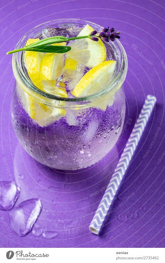 Eisgekühltes Lavendelwasser mit Zitrone, Lavendel und Trinkhalm auf violettem Grund Getränk Erfrischungsgetränk Frucht Kräuter & Gewürze Vitaminwasser
