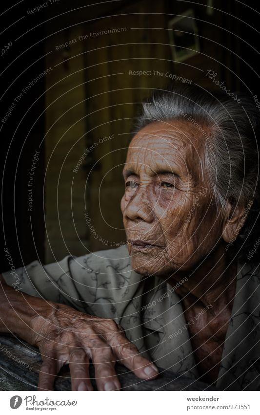 Memories Haut Gesicht feminin Großmutter Senior Kopf Hand Finger 1 Mensch 60 und älter Hütte sitzen braun grau Gefühle Menschlichkeit Gelassenheit ruhig