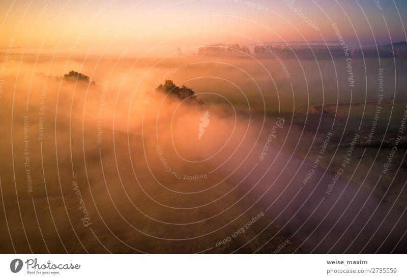 Himmel Ferien & Urlaub & Reisen Natur Sommer schön grün Landschaft Baum Wolken Wald Ferne Herbst gelb Umwelt Wege & Pfade Wiese