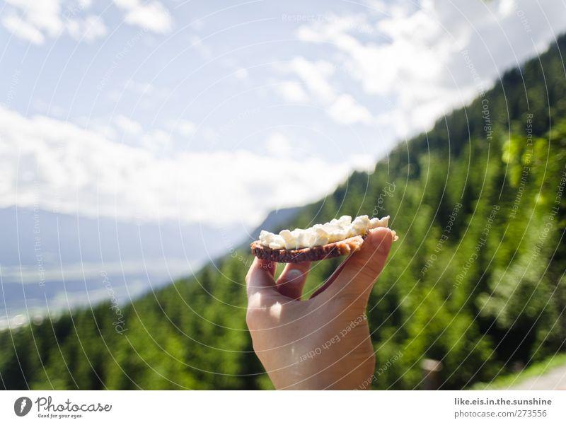 gesunde brettljause Himmel Natur Hand Baum Sommer Wolken Erholung Landschaft Umwelt Berge u. Gebirge Essen Gesundheit Zufriedenheit Lebensmittel wandern
