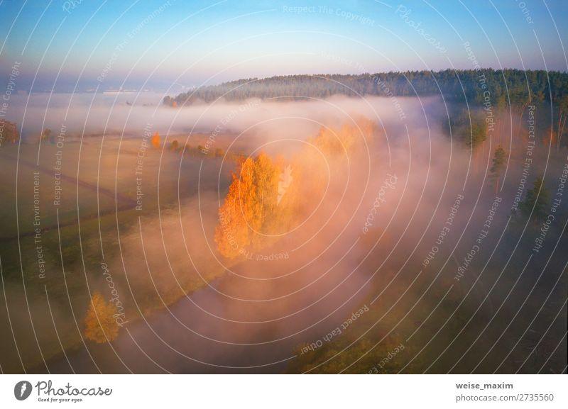 Himmel Ferien & Urlaub & Reisen Natur Pflanze grün Landschaft Baum Wolken Wald Ferne Herbst gelb Umwelt Wege & Pfade Wiese Gras