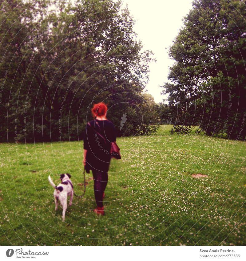 auf auf ^^ feminin Junge Frau Jugendliche Erwachsene 1 Mensch 18-30 Jahre Natur Schönes Wetter Baum Wiese Mode Leggings Strickjacke rothaarig Haustier Hund Tier