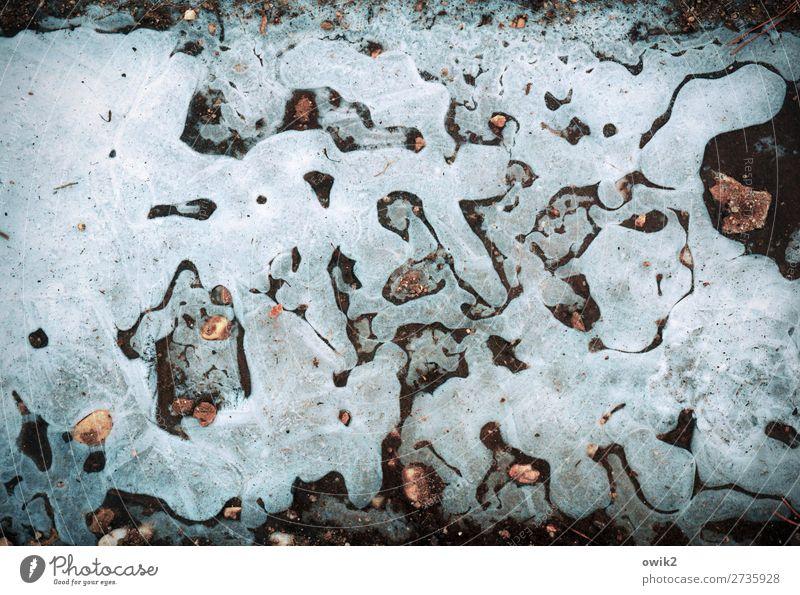 Natur macht Kunst Umwelt Winter Eis Frost Pfütze gefroren Stein ruhig bizarr fließen Farbfoto Außenaufnahme Detailaufnahme abstrakt Strukturen & Formen