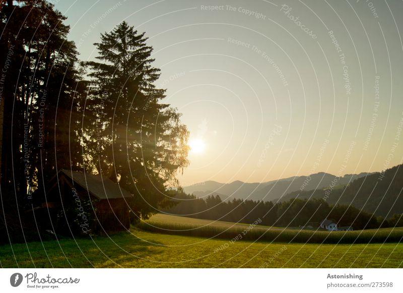 es dämmert Umwelt Natur Landschaft Pflanze Luft Himmel Sonne Sonnenaufgang Sonnenuntergang Sonnenlicht Sommer Wetter Schönes Wetter Wärme Baum Gras Sträucher