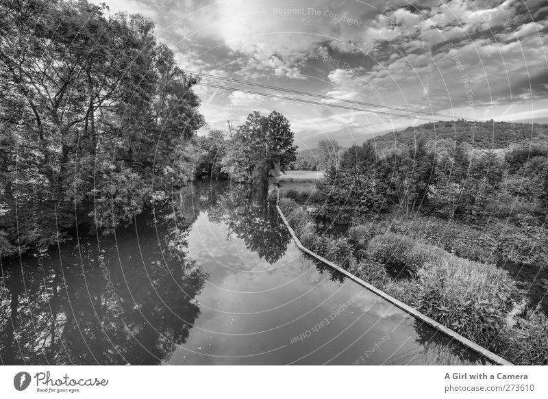 Fränkische Saale Umwelt Natur Landschaft Himmel Wolken Sommer Schönes Wetter Baum Flussufer fränkische Saale Unterfranken alt kalt wild ruhig Damm altmodisch