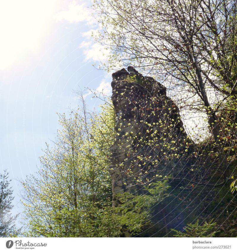 Auf der Höhe sein Himmel Natur grün Baum Sonne Freude ruhig Umwelt Ferne Landschaft Berge u. Gebirge hell Felsen Kraft wild Freizeit & Hobby