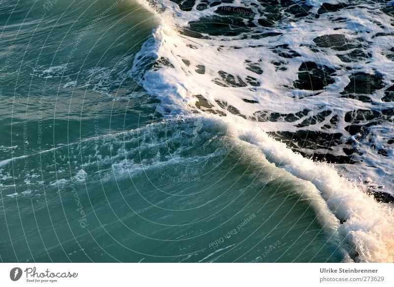 Brandung Natur Wasser Ferien & Urlaub & Reisen Meer Umwelt Bewegung Frühling Freiheit Küste Wellen natürlich Energie frei Tourismus nass Abenteuer