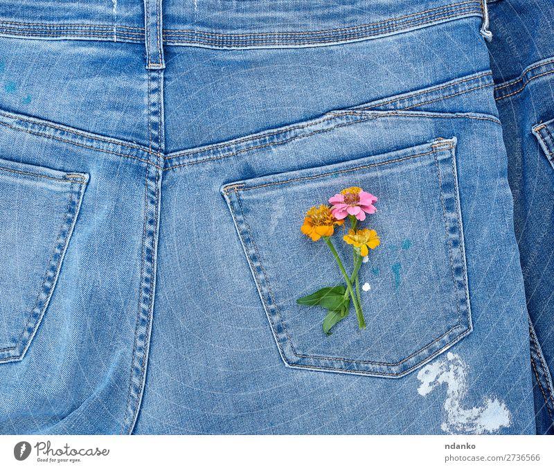 Blumenstrauß Stil Design Blüte Mode Bekleidung Jeanshose Stoff alt Blühend natürlich blau gelb grün Farbe Tradition Rücken Hintergrund lässig Baumwolle