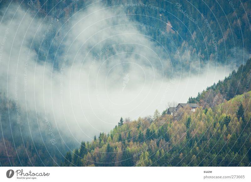 Es zog Nebel auf ... Ferne Haus Umwelt Natur Landschaft Pflanze Urelemente Luft Wolken Sommer Klima Wald Alpen Berge u. Gebirge Hütte außergewöhnlich grün