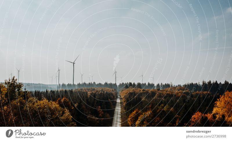 Windräder im Herbstwald Windrad Ökostrom Strom energie luft straße weg warm himmel