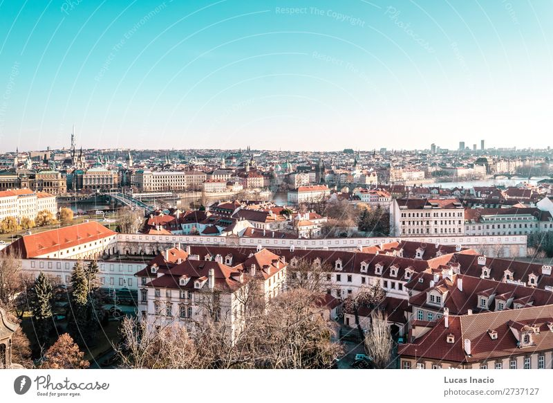 Panoramablick auf Prag, Tschechien Ferien & Urlaub & Reisen Tourismus Haus Büro Business Umwelt Natur Himmel Baum Blatt Fluss Stadtzentrum Altstadt Skyline