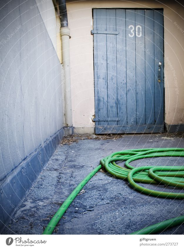 dendroaspis viridis Mauer Wand Arbeit & Erwerbstätigkeit 30 Ziffern & Zahlen Schriftzeichen Regenrinne Tür Gebäudeteil Gartenschlauch Schlauch Grüne Mamba