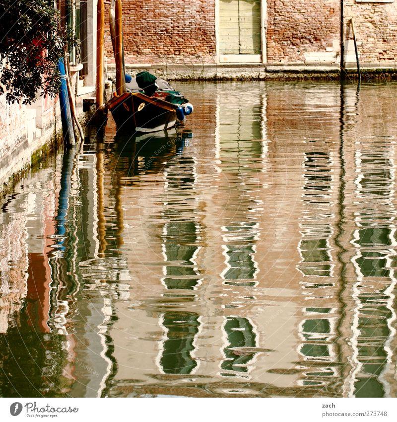 Am Wasser wohnen Pflanze Blume Küste Venedig Italien Fischerdorf Hafenstadt Altstadt Menschenleer Haus Architektur Mauer Wand Fassade Tür Bootsfahrt Fischerboot