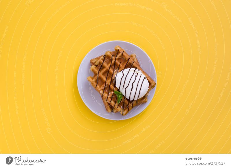 Waffel mit Schokoladensauce, Eis und Minze Dessert Speiseeis Belgier Belgien weiß süß Lebensmittel Gesunde Ernährung Foodfotografie Hintergrund Frühstück Wafer