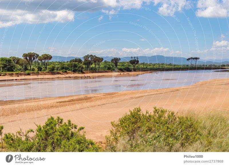 Blick auf den Ewaso Ng'iro Fluss in der Savanne schön Natur Landschaft Himmel Park Wald Urwald grün Samburu Afrika Hintergrund Stürze Kenia national tropisch