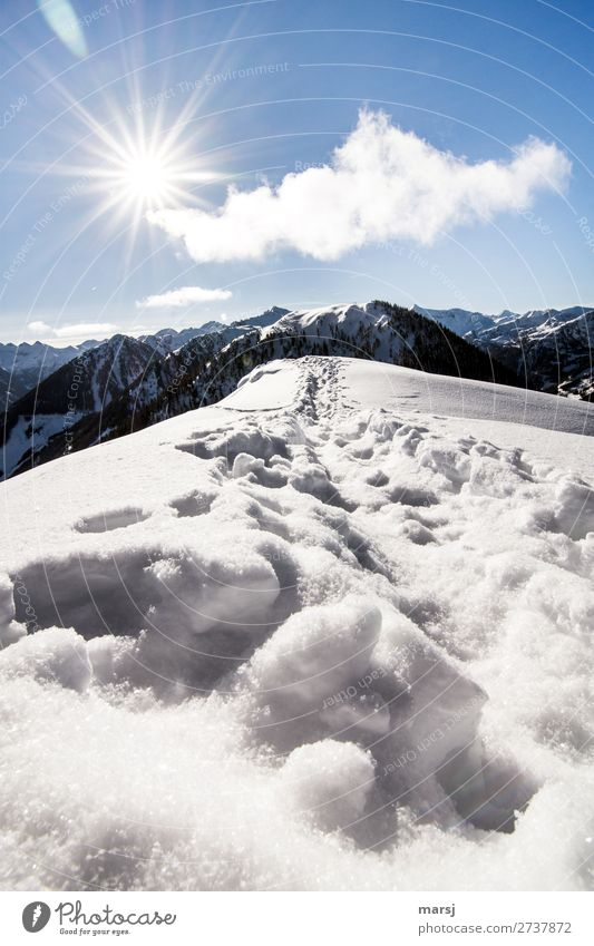 Und weiter gehts Natur Sonne Einsamkeit Winter Berge u. Gebirge kalt Schnee außergewöhnlich Horizont wandern Schönes Wetter Gipfel Hoffnung Alpen Unendlichkeit