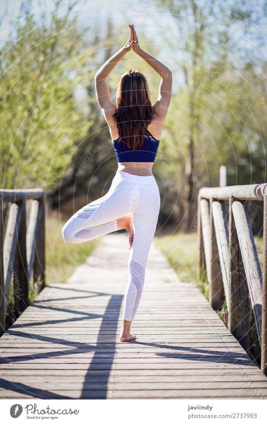 Junge schöne Frau, die Yoga in der Natur macht. Lifestyle Glück Körper Erholung Meditation Sommer Sport Mensch feminin Erwachsene Jugendliche 1 30-45 Jahre Baum