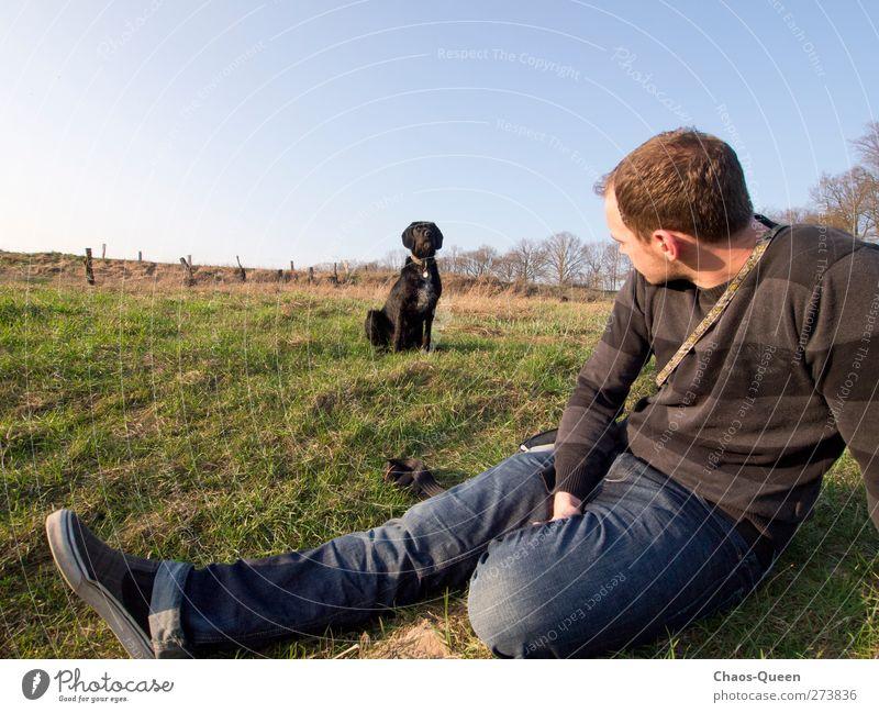 Was guckst du? Freiheit Sommer maskulin Mann Erwachsene 1 Mensch 18-30 Jahre Jugendliche Natur Himmel Wolkenloser Himmel Schönes Wetter Gras Wiese Jeanshose