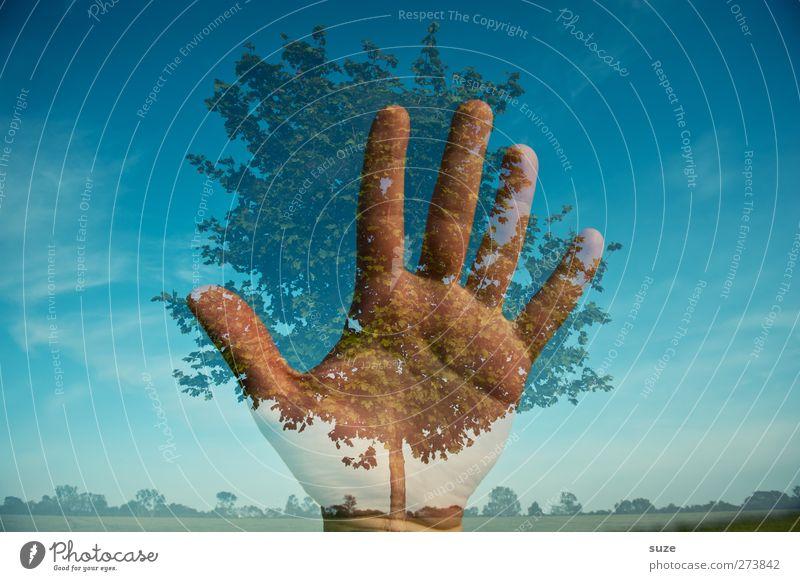 Save the nature Hand Finger Umwelt Natur Landschaft Pflanze Urelemente Himmel Horizont Klima Klimawandel Schönes Wetter Baum blau Schutz Verantwortung