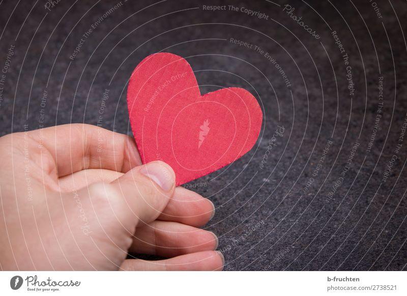 Herz für dich Mann rot Hand dunkel Erwachsene Liebe Zusammensein Freundschaft Dekoration & Verzierung Finger Papier Zeichen Hochzeit festhalten wählen