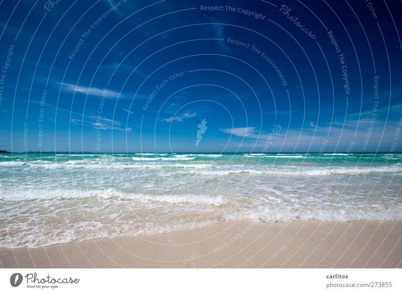 SOMMERANFANG !!!!!!!!!!! Himmel blau Wasser Ferien & Urlaub & Reisen weiß grün Sommer Meer Strand Erholung Umwelt Ferne Bewegung Küste Luft Horizont