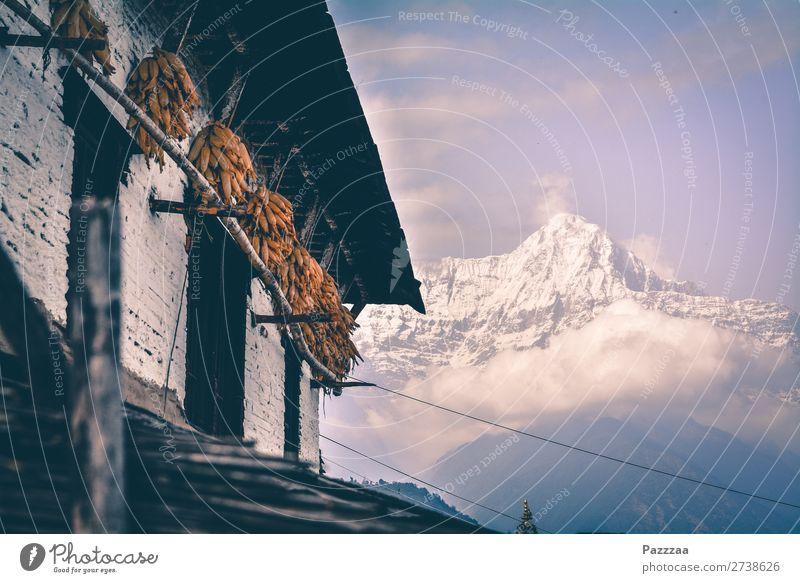 Sonnenuntergang im Alai-Tal Berge Hochgebirge Sonnenlicht Gebirge asien Nepal Himalaya Annapurna Gipfel Hütte Bergbauer