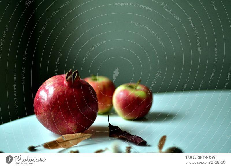 Still mit Granatapfel, zwei Äpfeln und trockenen Lindenblüten Gesunde Ernährung schön Erotik ruhig Freude Gesundheit Essen Leben Glück Frucht Design Raum