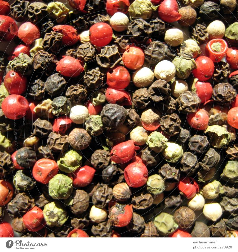 bunter Pfeffer Kräuter & Gewürze Ernährung Design Pfefferkörner mehrfarbig grün rot schwarz Körner Nahaufnahme Küchenkräuter kochen & garen Quadrat Farbfoto