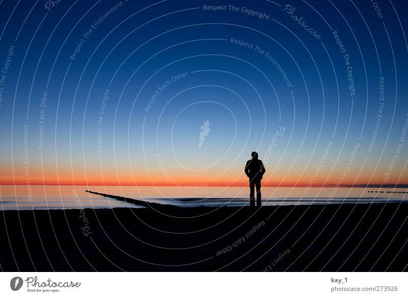 blue hour beach Natur Landschaft Wasser Wolkenloser Himmel Nachthimmel Horizont Sonnenaufgang Sonnenuntergang Frühling Schönes Wetter Wellen Küste Strand Ostsee