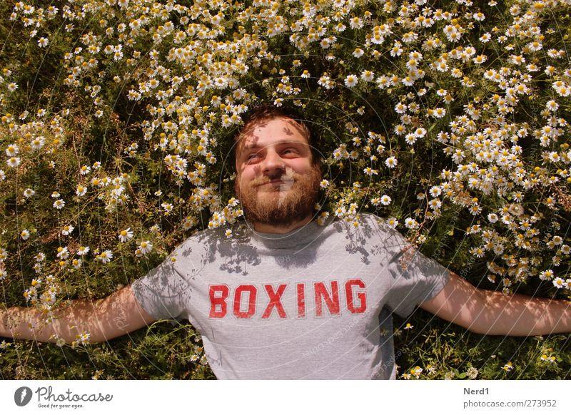 Boxing Natur Jugendliche Sommer Pflanze Gesicht Umwelt Wiese Glück lustig träumen Junger Mann maskulin Fröhlichkeit Schriftzeichen Sträucher Schönes Wetter