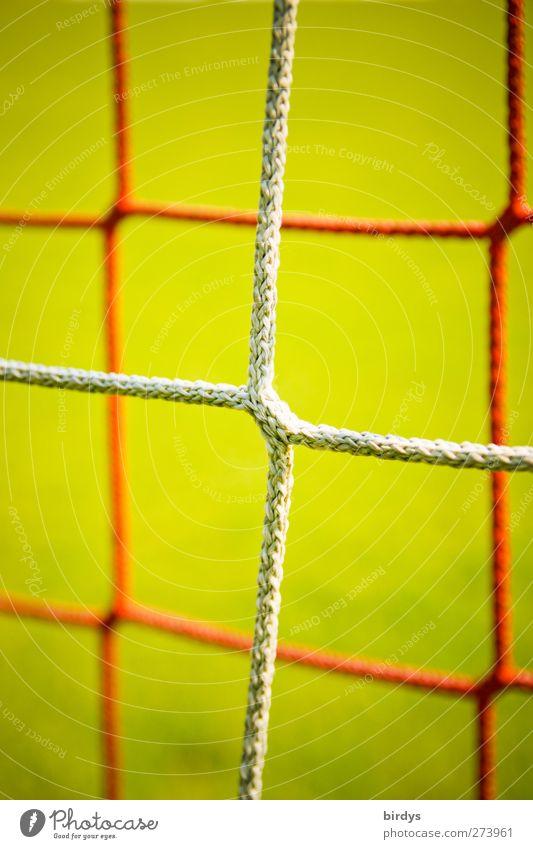 Netzwerk Fußballtor grün rot Sport Symmetrie Synthese Knotenpunkt Vor hellem Hintergrund 2 Farbfoto mehrfarbig Außenaufnahme Menschenleer Textfreiraum oben