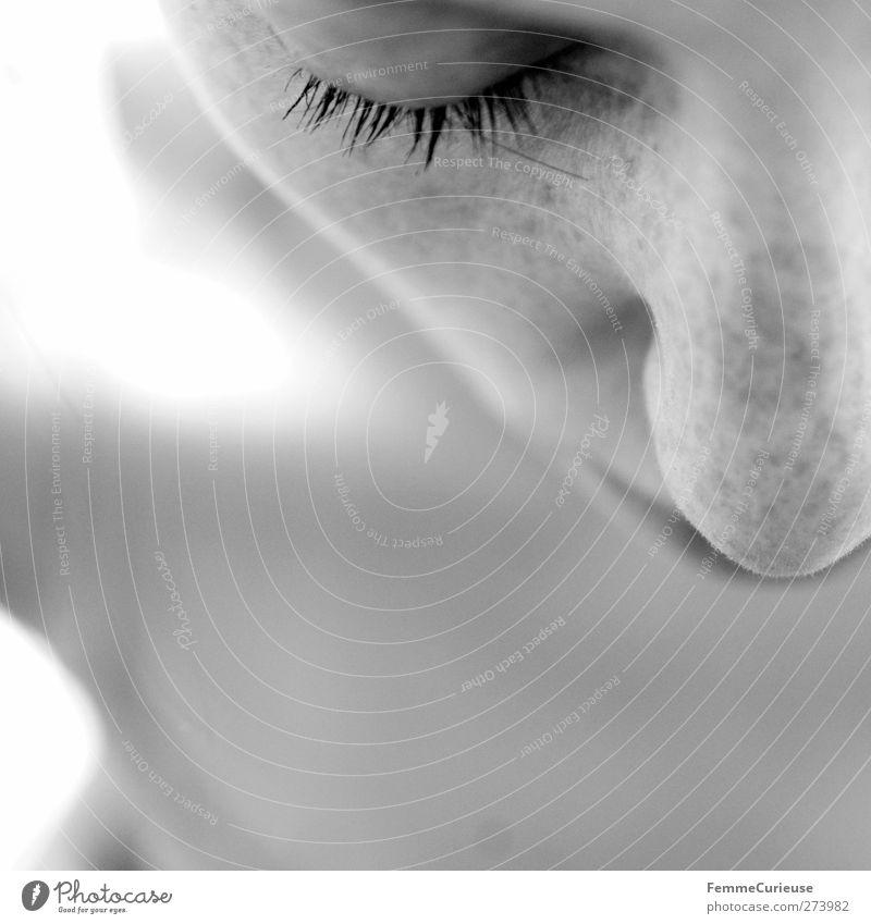 Pure. Mensch Frau Jugendliche schön Erwachsene Erholung Gesicht feminin nackt Junge Frau träumen 18-30 Jahre natürlich Haut schlafen Reinigen