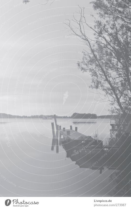 Steg ohne Zugang Natur Landschaft Wasser Himmel Wolken Wetter Pflanze Baum Gras Sträucher Wildpflanze Küste Seeufer Strand Bucht schwarz weiß Einsamkeit