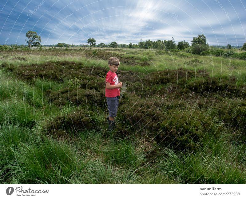Wanderung Im Moor Mensch Kind Himmel Natur Baum Sommer Pflanze Tier Wolken ruhig Erholung Landschaft Gras klein Horizont Kindheit