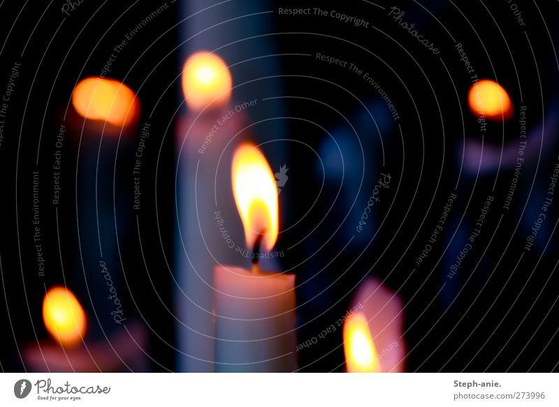 Licht im Dunkel Natur Einsamkeit ruhig gelb dunkel Stimmung orange Kraft gold Brand Warmherzigkeit Hoffnung Vergänglichkeit Romantik Kerze Unendlichkeit