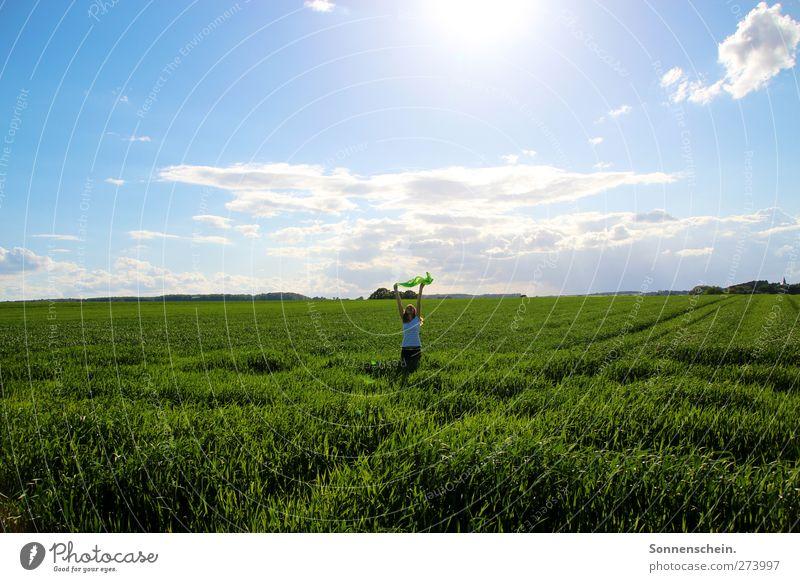 Wo fängt dein Himmel an? feminin Junge Frau Jugendliche 1 Mensch 18-30 Jahre Erwachsene Natur Wolken Sonne Sonnenlicht Sommer Schönes Wetter Wärme Gras Feld