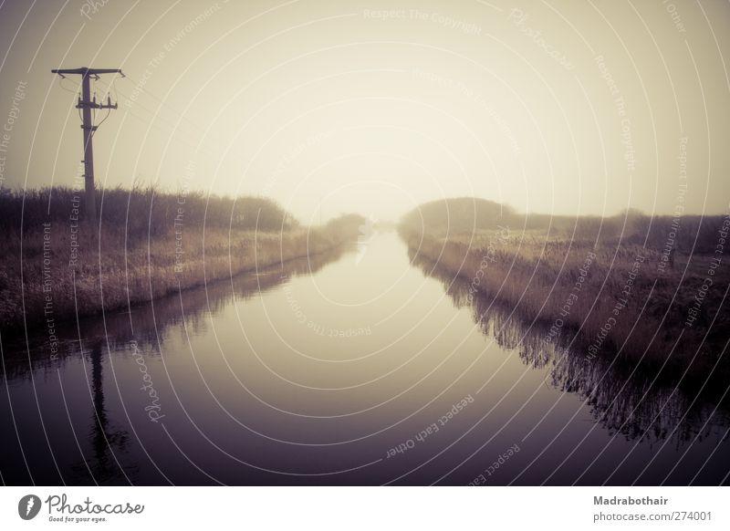 am Fluss Himmel Natur Wasser Einsamkeit ruhig Landschaft Horizont Stimmung Deutschland Nebel Kabel Idylle Schilfrohr Strommast mystisch