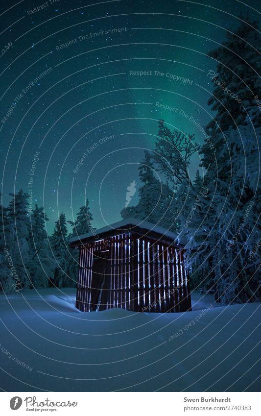 100 yeah Danke für die Glückwünsche Ferien & Urlaub & Reisen Tourismus Ausflug Abenteuer Ferne Freiheit Winter Schnee Winterurlaub wandern Umwelt Natur