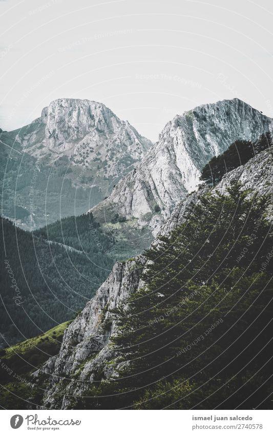 Ferien & Urlaub & Reisen Natur Farbe Landschaft Baum Erholung ruhig Wald Berge u. Gebirge Herbst Platz Spanien Gelassenheit Ausflugsziel Bilbao