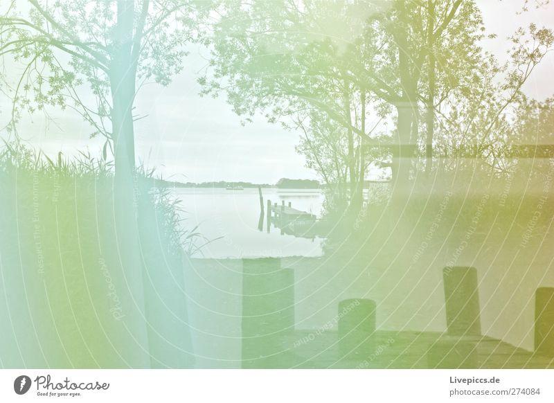 grünes Seeufer Kunst Künstler Maler Umwelt Natur Landschaft Wasser Himmel Wolken Pflanze Baum Gras Sträucher Wildpflanze Strand Brücke leuchten Lichtspiel