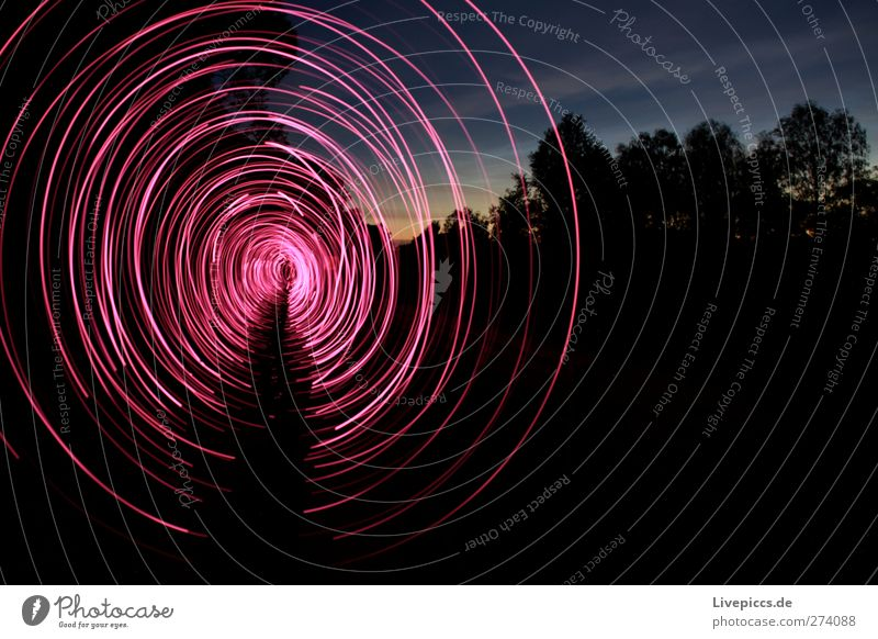 RED RODDEN Mensch maskulin Mann Erwachsene 1 Kunst Künstler Maler Landschaft Himmel Wolkenloser Himmel Pflanze Baum Verkehrswege Wege & Pfade drehen leuchten