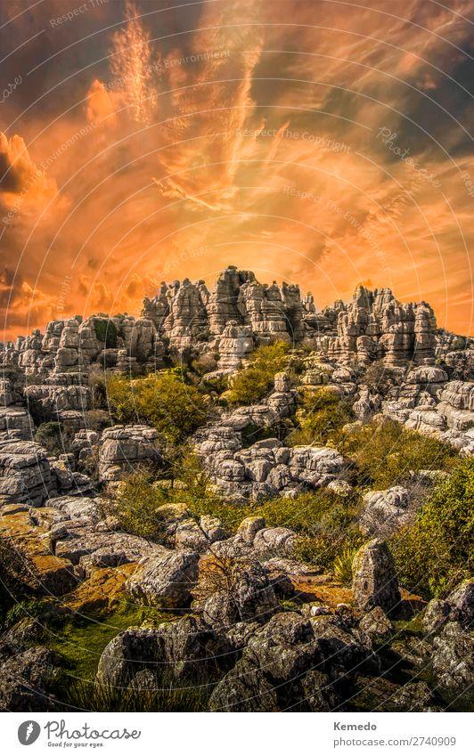 Himmel Ferien & Urlaub & Reisen Natur Sommer Pflanze Farbe schön Landschaft Sonne Erholung Wolken ruhig Wald Berge u. Gebirge dunkel Umwelt