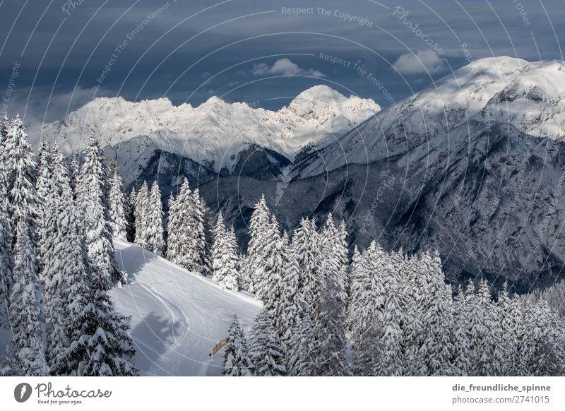 Winter in Tirol Umwelt Natur Landschaft Pflanze Himmel Wolken Wetter Schönes Wetter Wind Eis Frost Schnee Baum Nadelbaum Alpen Berge u. Gebirge Patscherkofel