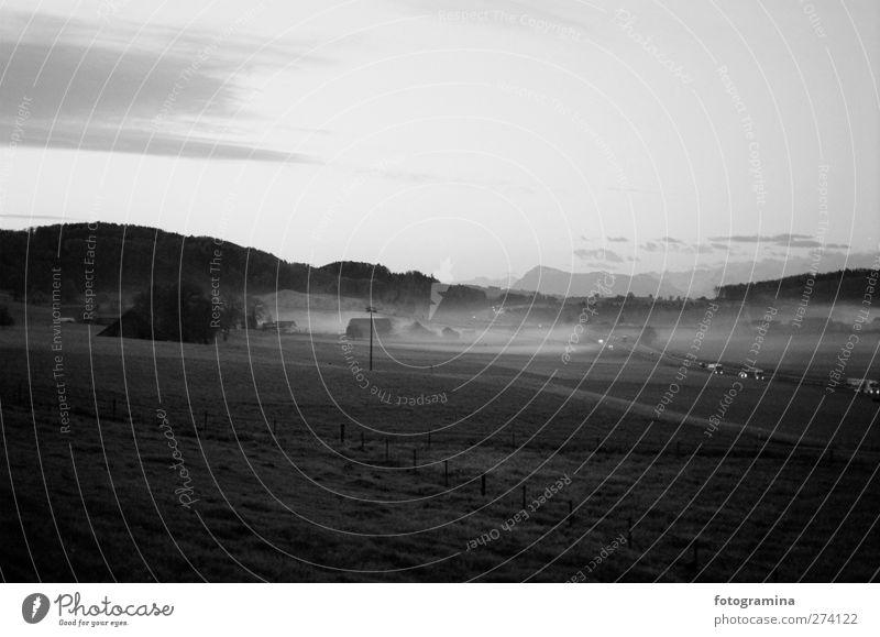 Morgendämmerung Natur Landschaft Pflanze Frühling Herbst Nebel Wiese Autobahn PKW geheimnisvoll Schwarzweißfoto Außenaufnahme Schatten Kontrast Silhouette