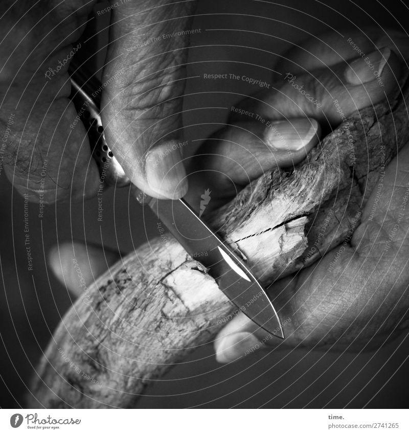 Materialprüfung Arbeit & Erwerbstätigkeit Handwerk Finger Klappmesser Werkzeug Messer Holz festhalten dunkel Leidenschaft Wachsamkeit geduldig Leben Ausdauer