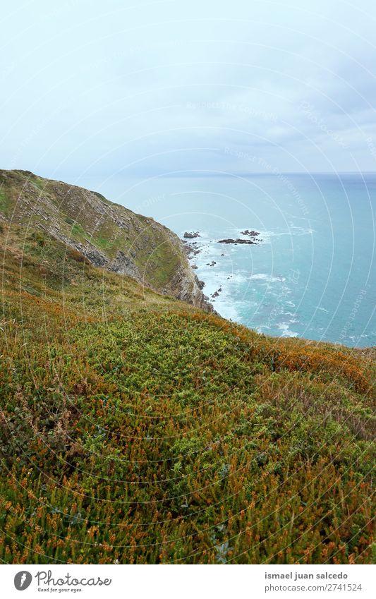 Klippe an der Küste Felsen Meer Wasser Strand Natur Außenaufnahme Ferien & Urlaub & Reisen Ausflugsziel Platz Landschaft Horizont Hintergrund Tapete ruhig